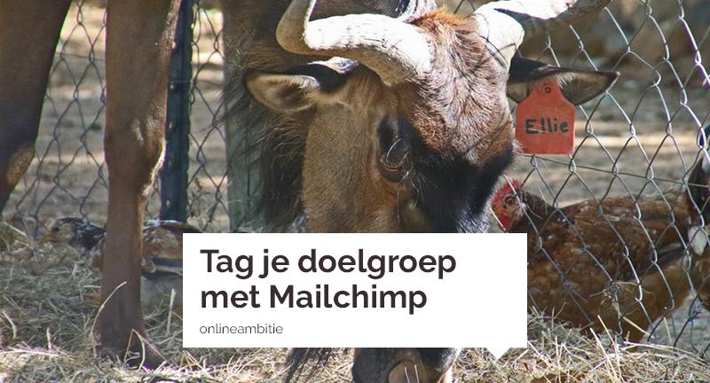 Tag je doelgroep met Mailchimp